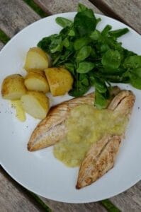 Mackerel and Gooseberry sauce